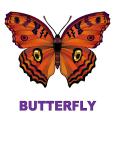Dynamic Body Shapes Butterfly