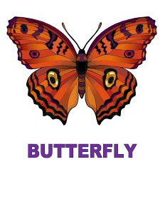 Dynamic Body Shapes Butterfly