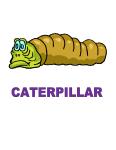 Dynamic Body Shapes Caterpillar