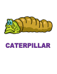Dynamic Body Shapes Caterpillar